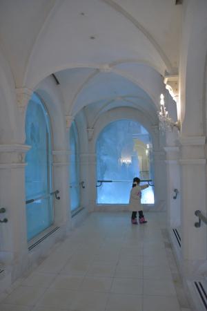 雪の美術館の氷の回廊