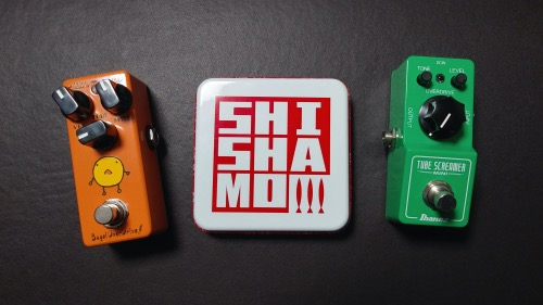 shishamoとともに